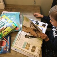 Wild Life and Animal Books for Your Home Library {Giveaway}
